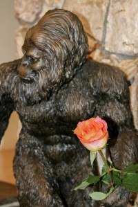 Big foot and a rose